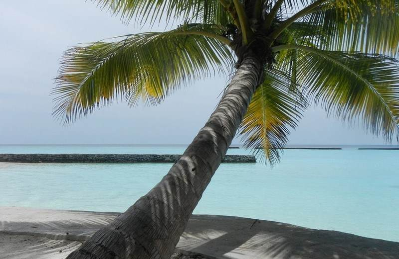 Maldivi – Veligandu resort