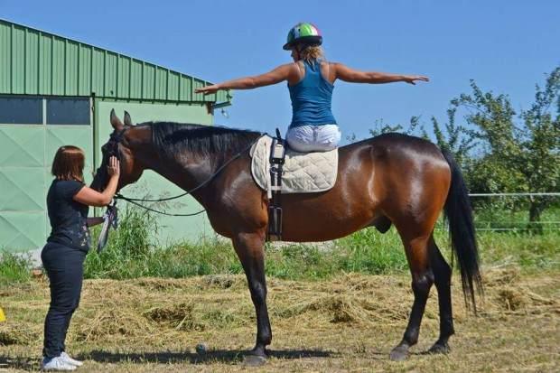 Kako nam konji mogu pomoći da budemo bolji i uspešniji ljudi?