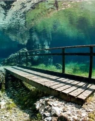 Čudesna priroda na Zelenom jezeru u Austriji