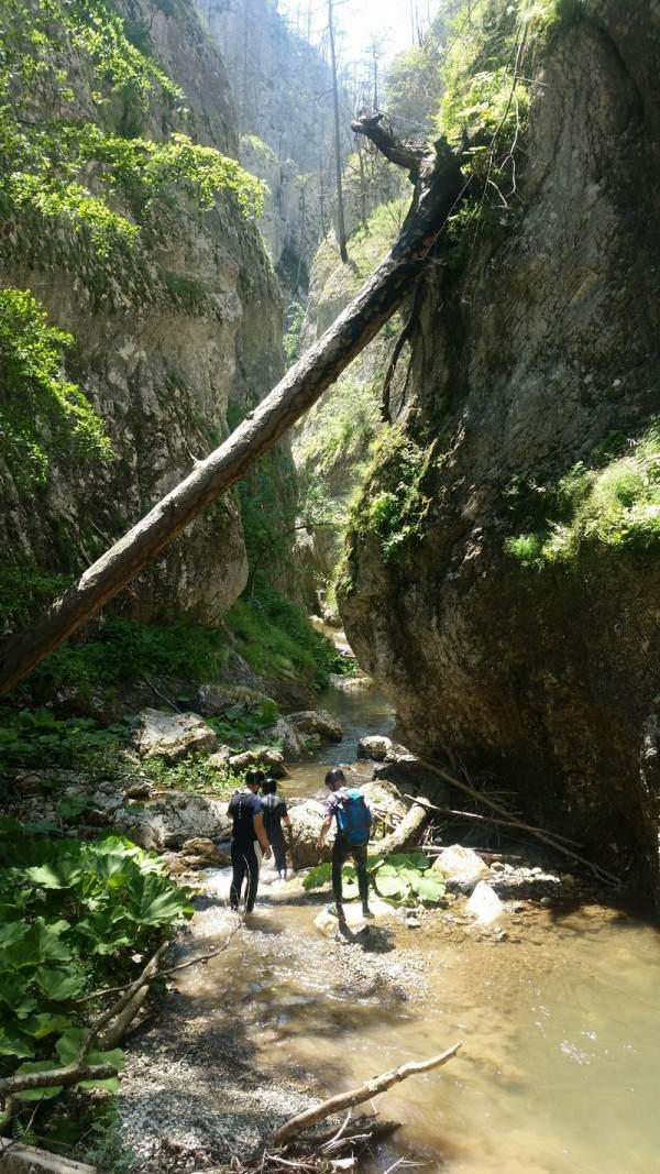Aktivnost u prirodi – kanjoning avantura (Beli Rzav)